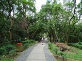 1051022 桃園虎頭山公園步道、虎頭山南峰、虎頭山:DSC09832C.jpg