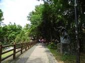 1051022 桃園虎頭山公園步道、虎頭山南峰、虎頭山:DSC09834C.jpg