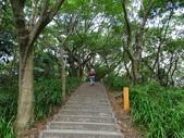 1051022 桃園虎頭山公園步道、虎頭山南峰、虎頭山:DSC09845C.jpg