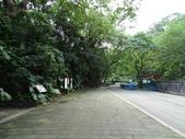 1041013 台北大安富陽自然生態公園、中埔山、福州山:DSC04047C.jpg
