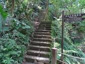 1041013 台北大安富陽自然生態公園、中埔山、福州山:DSC04087C.jpg