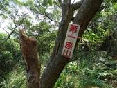 1041122 桃園楊梅福人登山步道:DSC06399C.jpg