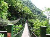 1060904 花蓮太魯閣小錐鹿步道、砂卡礑步道:DSC07860.JPG