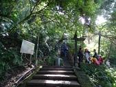 1070114 台北信義虎山自然步道:DSC00297C.jpg