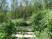 1041003 基隆七堵大牛稠登山步道:DSC03916C.jpg