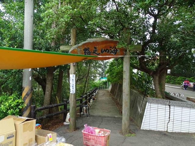 DSC05496C.jpg - 1051119 桃園蘆竹五酒桶山步道