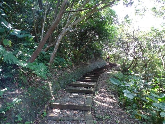 DSC08496C.jpg - 1050924 新北萬里野柳里登山步道、駱駝峰稜線步道