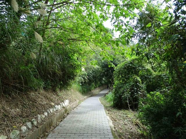 DSC07026C.jpg - 1051224 新竹寶山水庫環湖步道