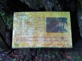 1060529 新北烏來馬岸古圳步道、溪瀧步道、福山國小:DSC02481C.jpg