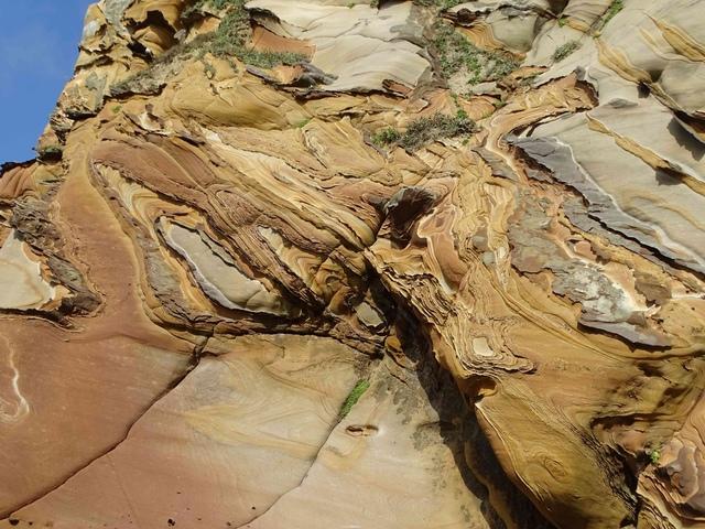 DSC08835C.jpg - 1050924 新北萬里野柳里登山步道、駱駝峰稜線步道