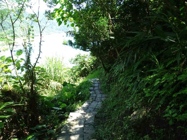 DSC04531C.jpg - 1060630 花蓮豐濱芭崎眺望台,大石鼻山步道