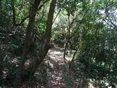 1040718 新北貢寮大嶺古道、大石壁坑北峰、大石壁坑山:DSC02880C.jpg