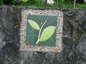 1040608 台北文山茶香環狀步道:DSC01423C.jpg