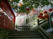 1070114 台北信義虎山自然步道:DSC00271C.jpg