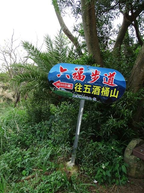 DSC05364C.jpg - 1051119 桃園蘆竹五酒桶山步道