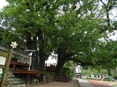1040926 新竹新埔文山步道、犁頭山:DSC03737C.jpg