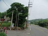 1070428 桃園楊梅保甲古道、東森山林步道:DSC08395C.jpg