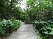 1041013 台北大安富陽自然生態公園、中埔山、福州山:DSC04072C.jpg