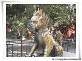 1225北京:IMG_1000.JPG