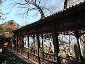 1225北京:DSC00629.JPG
