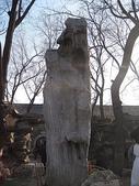 1225北京:IMG_1078.JPG