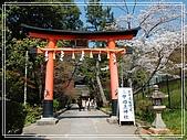 2009 宇治-賞櫻(下):DSC_0230.jpg