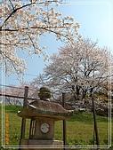 2009 宇治-賞櫻(下):DSC_0259.jpg