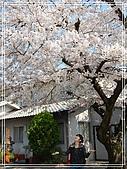 2009 宇治-賞櫻(下):DSC_0335.jpg
