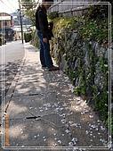 2009 宇治-賞櫻(下):DSC_0352.jpg