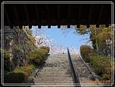 2009 宇治-賞櫻(下):DSC_0356.jpg