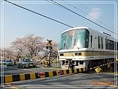2009 宇治-賞櫻(下):DSC_0396.jpg