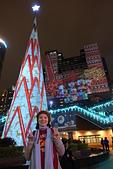 2016生活記錄:2016新北歡樂耶誕城3D立體光雕耶誕樹.JPG