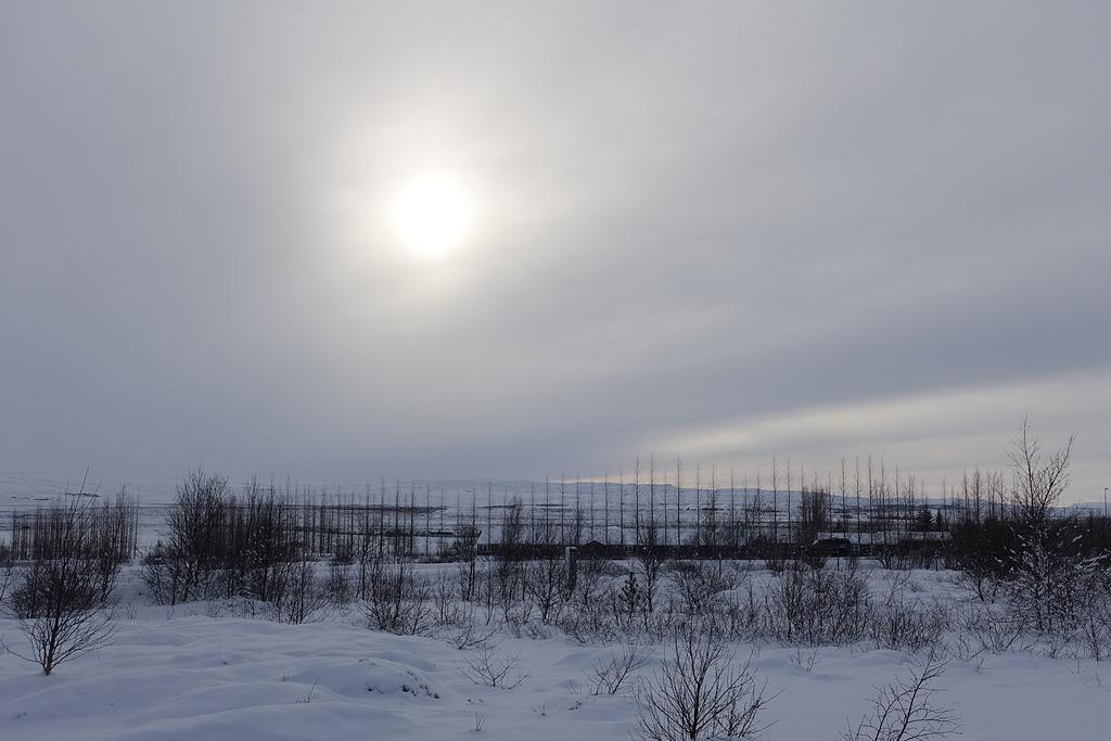 201702荷比冰之旅:冰島金環之旅辛格韋德利國家公園陽光照耀白色大地.JPG