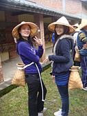 2012春節假期及寒假旅遊:大家來採茶 (2).JPG