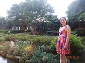 I Love Jenny & 其他生活縮影 :20200515遠東飯店新鮮香草花園.JPG