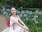 I Love Jenny & 其他生活縮影 :20200517內雙溪自然中心紫色煙火般的愛情花.JPG