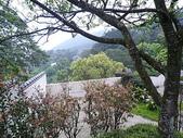 1000324陽明山惠如家:P1020883