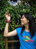小狗小兔趴趴走:20081019-菁桐之旅-022.JPG