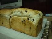 2012-11-24公關麵包:P1000011.JPG
