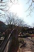 2011-02-06 菁桐國小_美麗光影乍現(上傳完畢):IMG_7614.JPG
