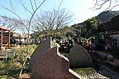 2011-02-06 菁桐國小_美麗光影乍現(上傳完畢):IMG_7562.JPG