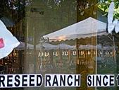 金針山上的另一個故事~8/21,22/2010:瑞穗牧場晨景-2.jpg
