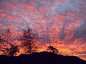 發現秀巒楓景的故事-2008-12-27:宇老晨景-12-27.jpg