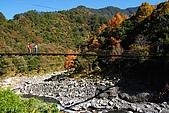 發現秀巒楓景的故事-2008-12-27:秀巒吊橋-01.jpg