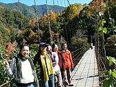 發現秀巒楓景的故事-2008-12-27:秀巒吊橋-02.jpg