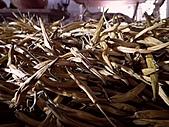 金針山上的另一個故事~8/21,22/2010:烘培過的乾燥金針-3.jpg