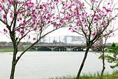 1070308-台南地方文化館:IMG_9271.jpg