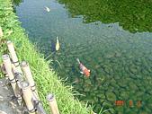 四國香川之旅(瀨戶大橋&岡山城&後樂園)20090803:DSC03015.JPG