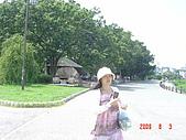 四國香川之旅(瀨戶大橋&岡山城&後樂園)20090803:DSC02960.JPG