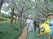 劍湖山之旅20101120:DSC03684.JPG